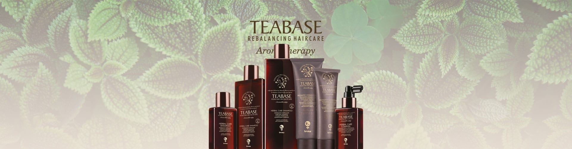 kit Herbal Care Teabase di Tecna per eliminare la forfora
